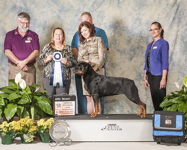 American rottweiler club specialty 2015